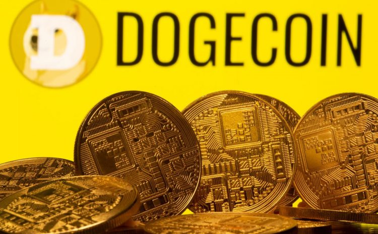 Dogecoin Price Drops by a Third After Elon Musk Calls it a 'Hustle' on Saturday Night Live