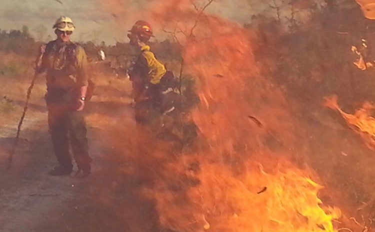 Fire-starting drones are actually helping some firefighters